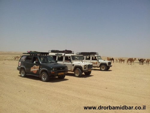 Jeeps and camels